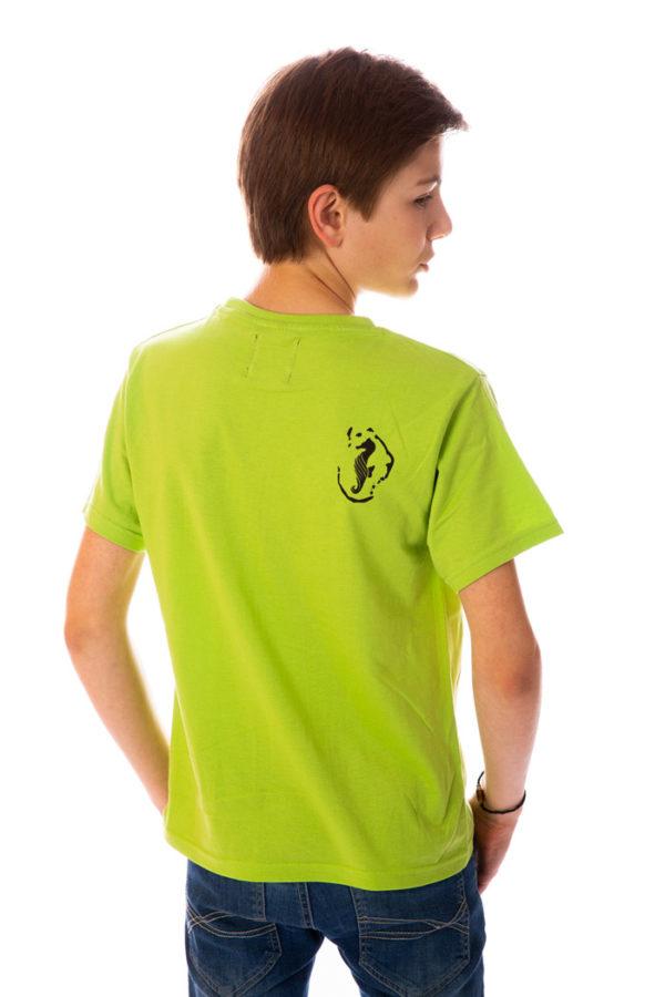 T-shirt Seahorse Mahoré